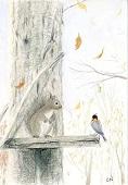 晩秋の一コマ リスとヤマガラ