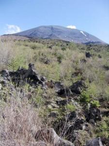 浅間山頂を望む
