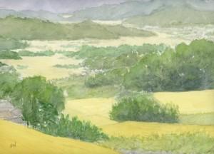 長野県の棚田
